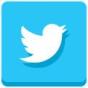 socialmediaiconstwitter
